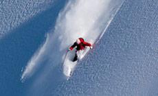 Avalanche App